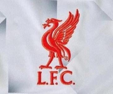 Troisieme_Maillot_de_foot_Liverpool_2019_pas_cher_(7)